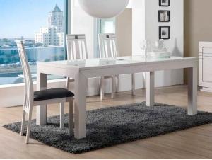 Table à manger moderne