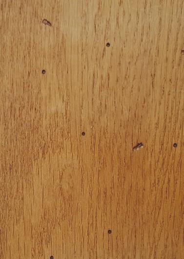 Chêne doré - A6 2DC